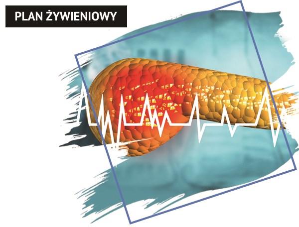 Plan żywieniowy w chorobie trzustki - przewlekłym zapaleniu trzustki